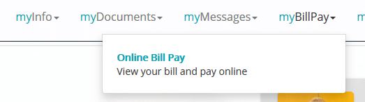 Zelskin Pay My Bill